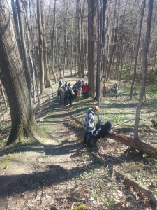 From our Spring Foraging Walk in April at Erie Bluffs State Park.
