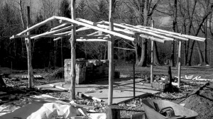 An early picture of the timber frame for the Seed House.